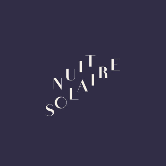 logo_nuitsolaire_fonce copie